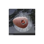 NFL Cincinnati Bengals Sportz Splatz Football Window Decal